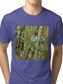 Leaves and moss in rainforest near Kuranda Tri-blend T-Shirt