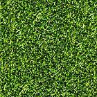 Grass by henrybud
