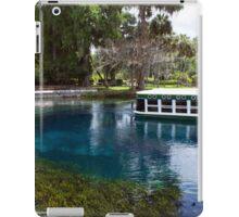 Glass Bottom Spring  iPad Case/Skin