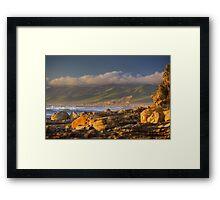 Golden Jalama Framed Print
