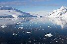 Reflecting on Antarctica 010 by Karl David Hill
