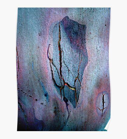 Bark Abstract # 4 Poster