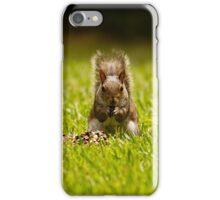 The Squirrel i-Phone / iPad Cover iPhone Case/Skin
