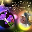 Merry Xmas to you all.  by waxyfrog
