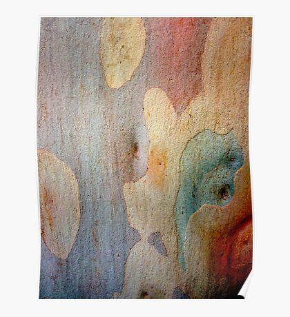 Bark Abstract # 7 Poster