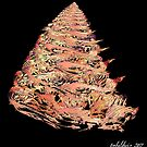 """Cone Hive"" by Patrice Baldwin"
