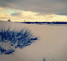 Wisconsin Winter by Josrick