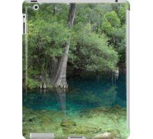 Suwannee Dreams iPad Case/Skin