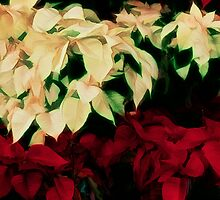 Yuletide Bouquet by sundawg7