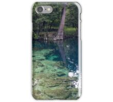 Royal Spring iPhone Case/Skin