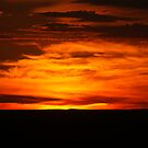 Painted Sunset by waynepearce