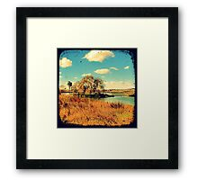 Dangars Lagoon Willow - Through The Viewfinder (TTV) Framed Print