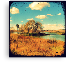 Dangars Lagoon Willow - Through The Viewfinder (TTV) Canvas Print