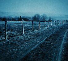 Homeward-bound by Anne Staub