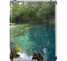 Royal Suwannee iPad Case/Skin
