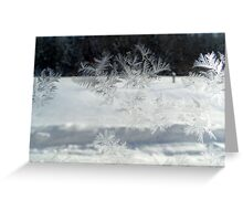Ice Flowers Greeting Card
