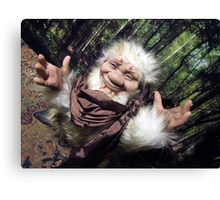 Mr. Fluffy the troll! Canvas Print