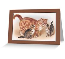 Mamma Cat and Kittens Greetings Greeting Card