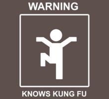 Kung Fu 2 by Stevie B