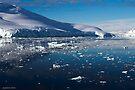 Reflecting on Antarctica 015 by Karl David Hill
