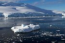 Reflecting on Antarctica 018 by Karl David Hill