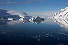 Reflecting on Antarctica 019 by Karl David Hill