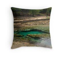Little River Springs Throw Pillow
