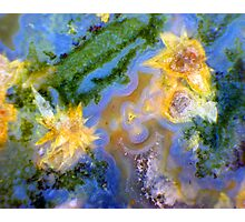 Daffodils (Red Lightning Agate) Photographic Print