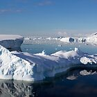 Reflections of Antarctica by Karl David Hill