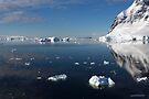Reflecting on Antarctica 026 by Karl David Hill