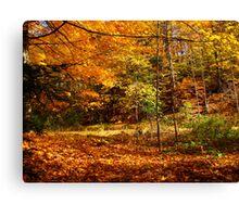 Leaf laden Canvas Print