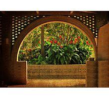 Tropical Garden Arch Photographic Print