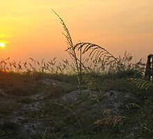 Sunrise Over the Dunes by Itsmyname10