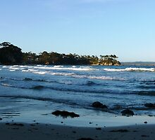 Scenic South Coast by Trish Meyer