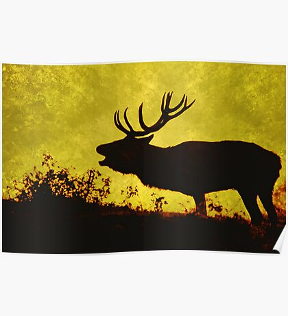red buck 2 Poster