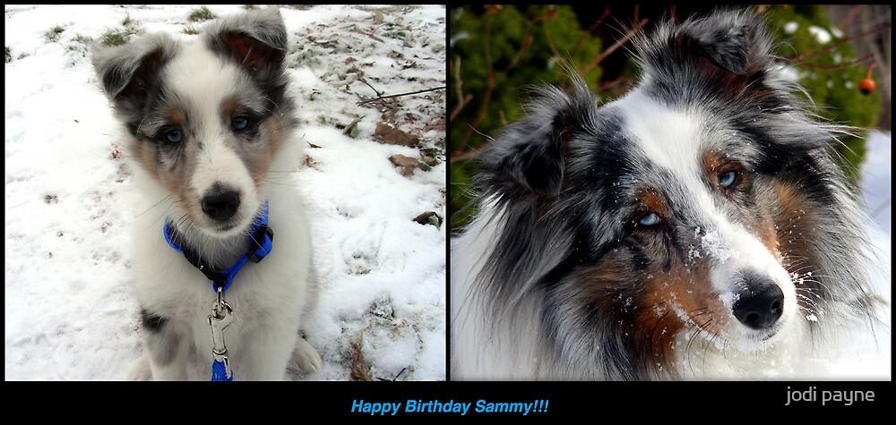 Happy Birthday Sammy by jodi payne