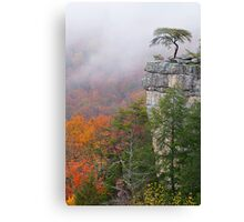 Buzzards Roost Canvas Print