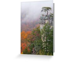Buzzards Roost Greeting Card