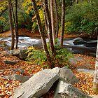 Looking Glass Creek by Benkeys
