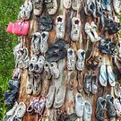 The Shoe Tree by Eve Parry