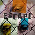 Escape by Phil Perkins