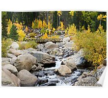 Fall River Road - Rocky Mountain National Park Poster