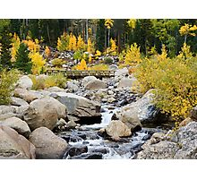 Fall River Road - Rocky Mountain National Park Photographic Print