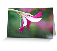 Sassy Pink Geranium Floret on Painted Background Greeting Card