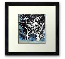 Midnight Trees Framed Print