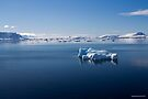 Reflecting on Antarctica 036 by Karl David Hill