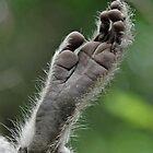 Foot art ! by jozi1