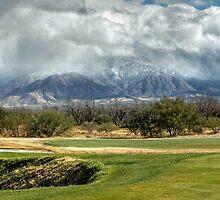 Just Winter in Arizona by Lucinda Walter