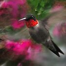 Hummingbird with Pink by michaelasamples