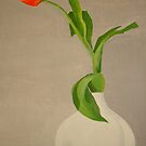 Single Red Tulip In A White Vase by taiche
